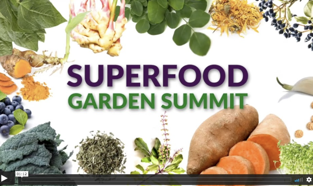 Superfood Garden Summit – Get healthy and NOURISH yourself with SUPERCHARGED foods grown right at home